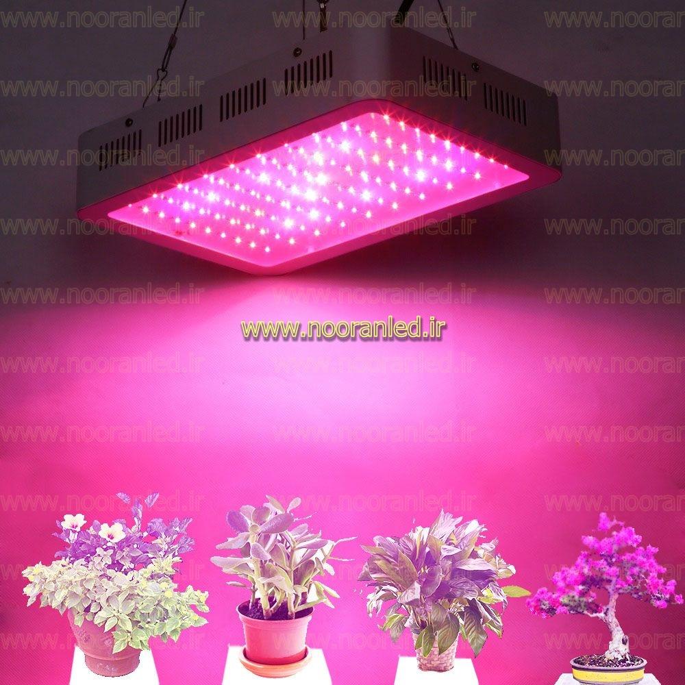 مشخصات و قیمت لامپ ال ای دی گیاهان به صورت عمده، بستگی به مدل لامپ و طیف نوری آن داشته و لامپ های رشد گیاه فول اسپکتروم به دلیل داشتن تمام این طیف فرکانسی از بقیه مدل ها قیمت بالاتری دارند.